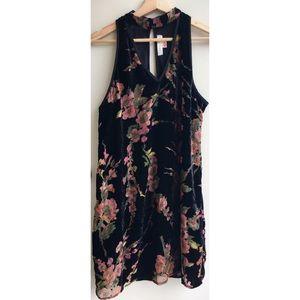 Band of Gypsies Black Floral Velvet Mini Dress
